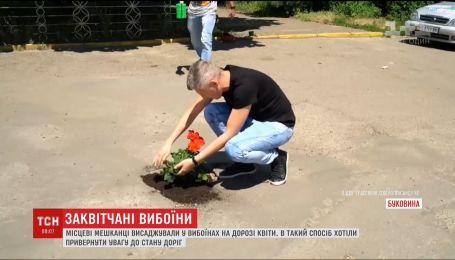 В Черновцах местные жители высадили цветы в ямах на дороге
