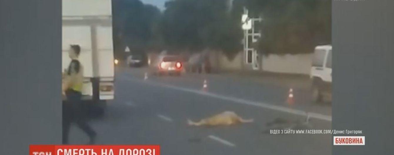 На Буковине водитель микроавтобуса насмерть сбил велосипедиста
