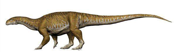 Динозавр-гігант_2