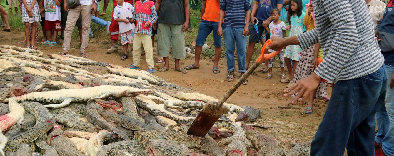 В Индонезии разъяренная толпа убила почти три сотни крокодилов ради мести