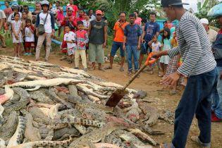 В Індонезії розлючений натовп вбив майже три сотні крокодилів заради помсти