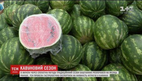 ТСН проверила на содержание нитратов арбузы с рынков и супермаркета