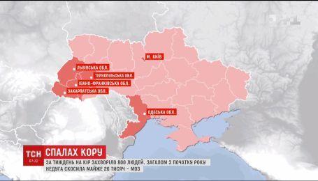 За тиждень на кір в Україні захворіло 800 людей