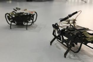 В Rolls-Royce создадут мини-жуков для ремонта двигателя
