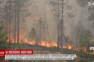 У Швеції горять ліси від полярного кола до Балтики