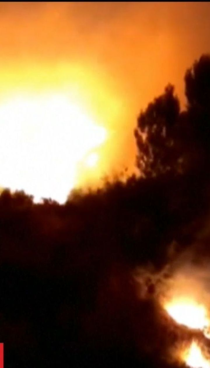 Десятки людей евакували в іспанській провінції Малага через лісову пожежу