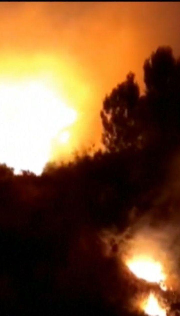 Десятки людей эвакуировали в испанской провинции Малага из-за лесного пожара