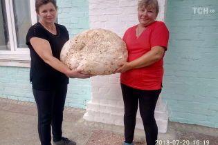 Крупнейший украинский гриб селяне хотели обменять на бильярд