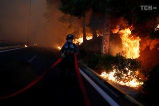 Адский огонь: колличество жертв пожаров возле Афин возросло до 20 человек