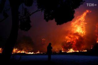 В результате лесных пожаров в Греции погиб человек. Правительство просит помощи у ЕС