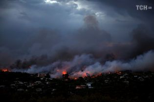 Количество погибших в результате лесных пожаров в Греции возросло до 50 человек