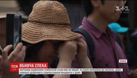 Жертвами аномальной жары в Японии стали 65 человек