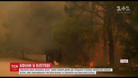 Східна Греція потерпає від масштабних лісових пожеж, є загиблі
