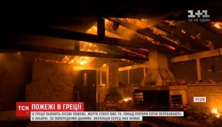 Десятки людей стали жертвами масштабных лесных пожаров в Греции