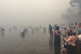 Пожежі у Греції: у Мережі показали, як люди рятуються від вогню у морі