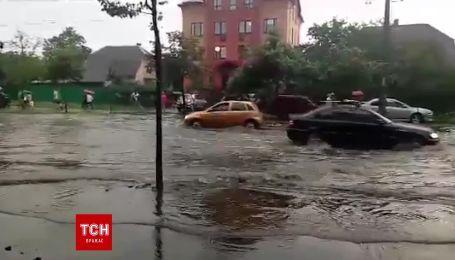 """Непогода повалила дерево и залила дорогу возле станции метро """"Нивки"""""""