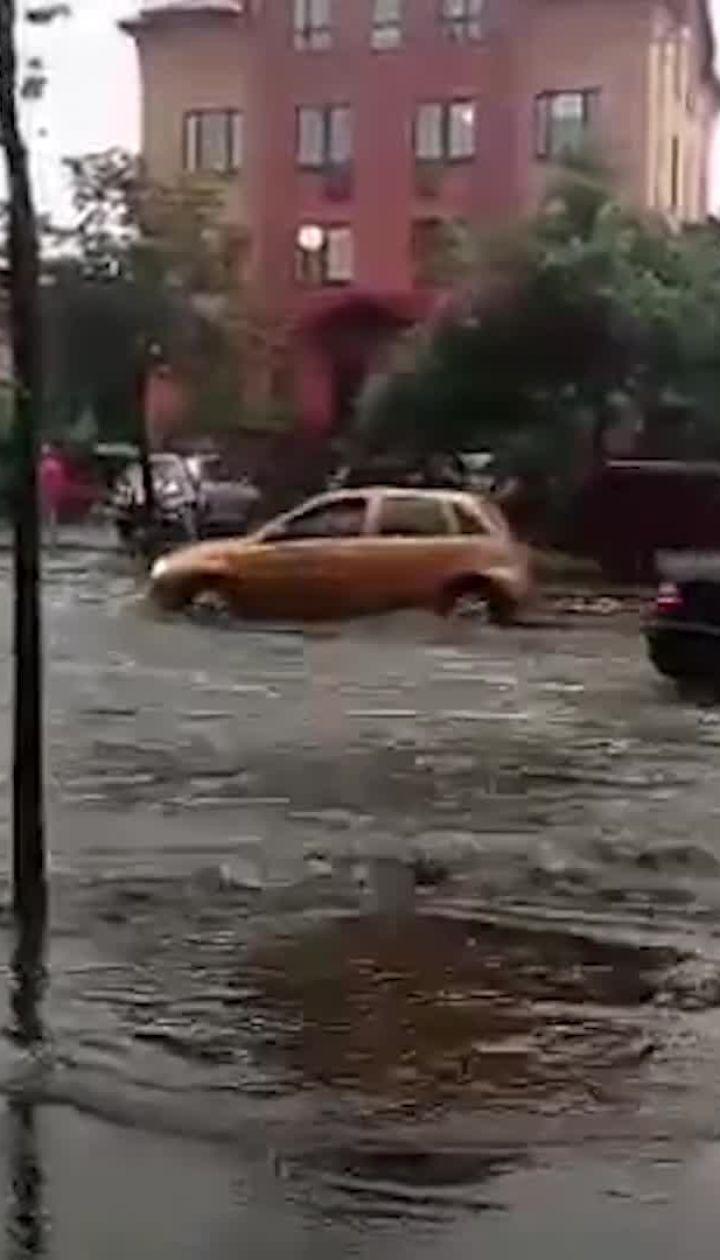 """Негода повалила дерево та залила дорогу біля станції метро """"Нивки"""""""