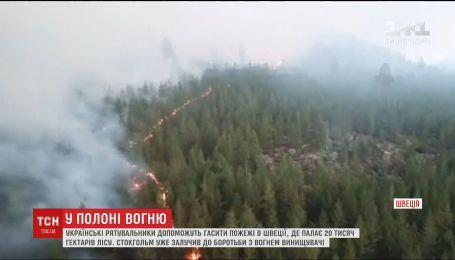 Украинские спасатели будут гасить лесные пожары в Швеции
