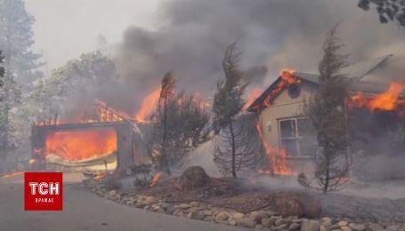 Крупный пожар в Северной Калифорнии не оставляет после себя ничего живого