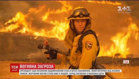У Каліфорнії, що потерпає від лісових пожеж, оголосили надзвичайний стан