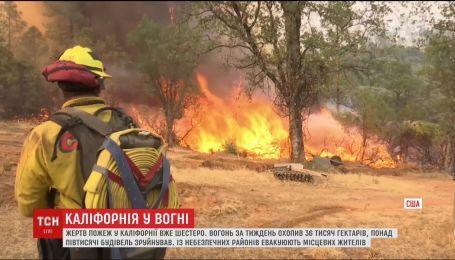 На півночі Каліфорнії не вщухають лісові пожежі
