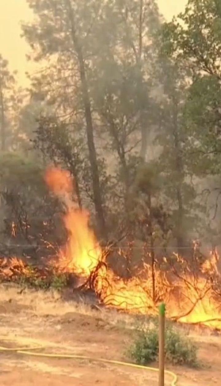 Лесные пожары в Калифорнии не утихают, погибли шесть человек