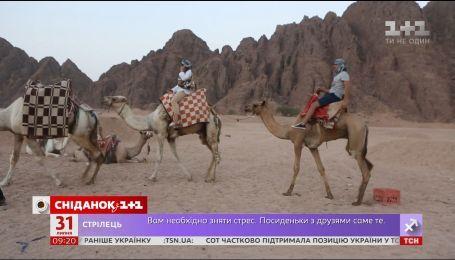 Мой путеводитель. Традиционный кофе бедуинов и чем опасны поездки на квадроциклах