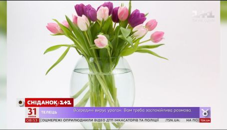 Как продлить жизнь цветам в вазе