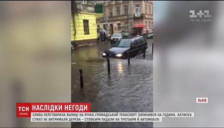 Из-за кратковременного ливня центр и спальные районы Львова захлебнулись водой