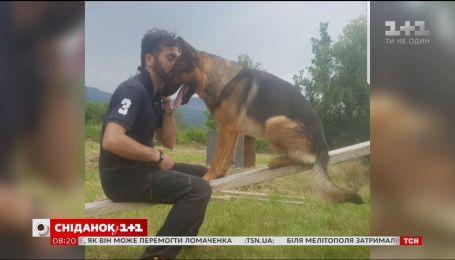Итальянцы оплакивают собаку-героя, который спасал людей после страшных землетрясений