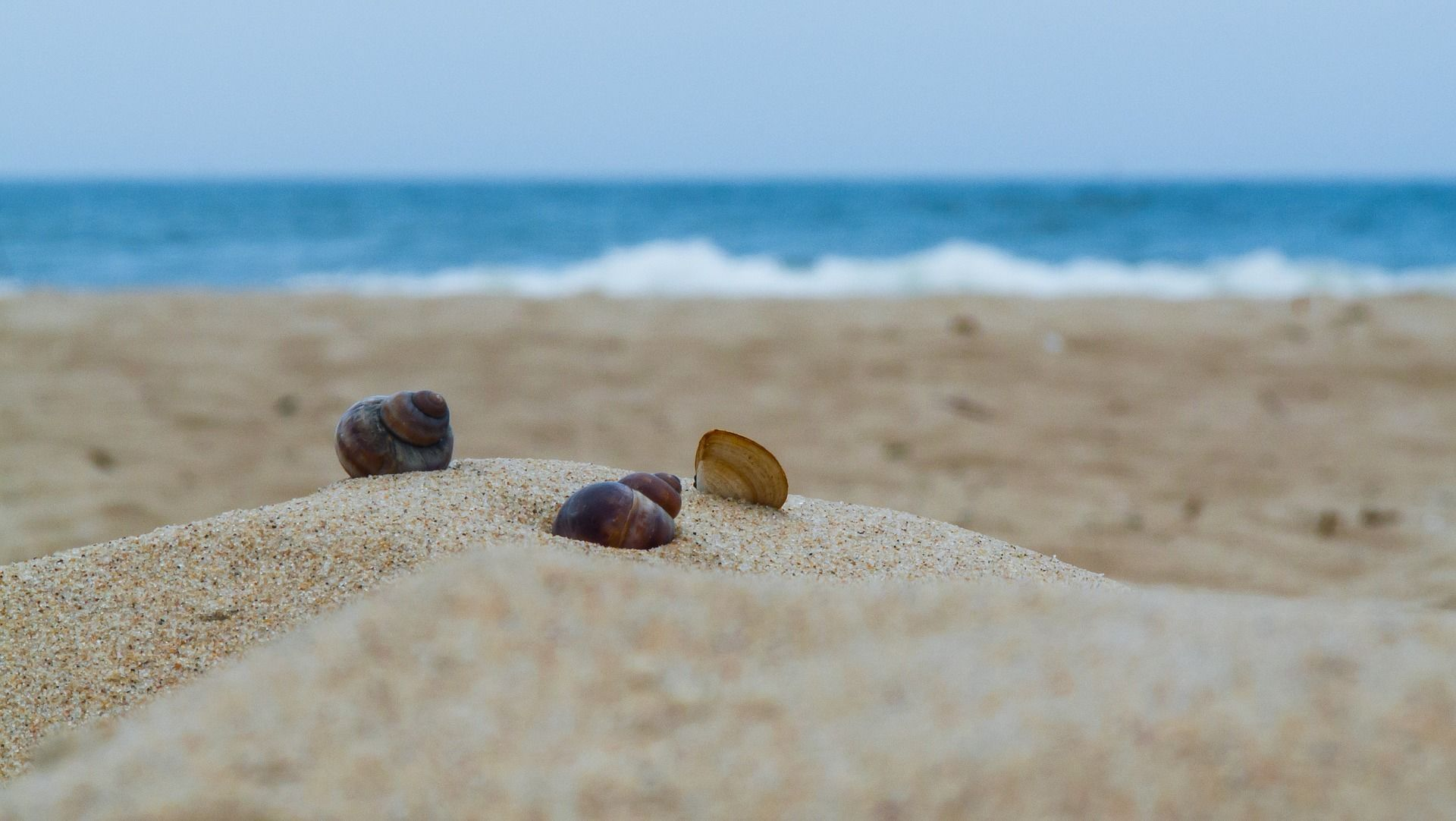 пляж. море, літо_1