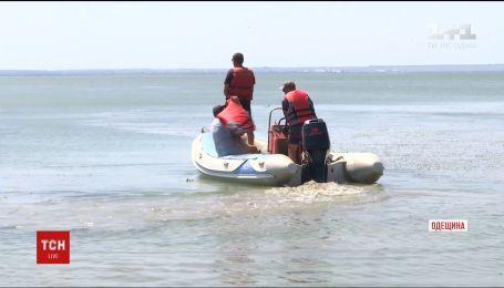 В Одесской области ищут мальчика, который вышел на Днестровский лиман на самодельном плоту