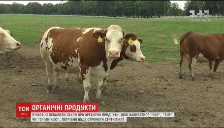 В Украине будут штрафовать производителей, которые будут обозначать экологичность продута без сертификата