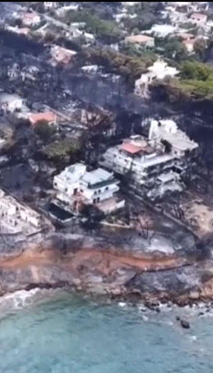В Греции задержали возможного виновника убийственных лесных пожаров
