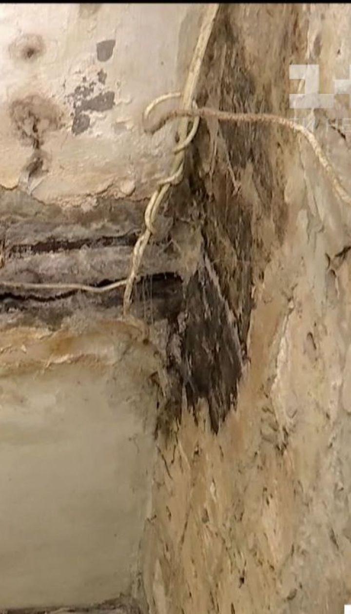 Токсичные грибки не дают жить обитателям сразу трех многоэтажек в столице