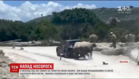 В Мексике носорог напал на машину, в которой находилась семья туристов