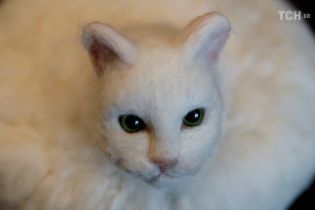 Японський художник створив робота-пилососа з головою кішки