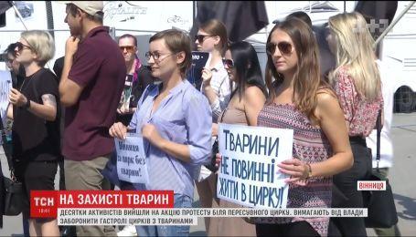 У Вінниці активісти вимагають заборонити гастролі цирків з тваринами