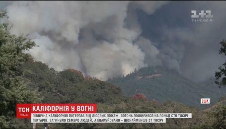 У Каліфорнії лісові пожежі охопили площу в понад сто тисяч гектарів