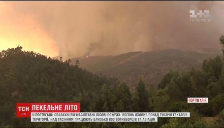 Через пекельну спеку у Португалії спалахнули масштабні лісові пожежі
