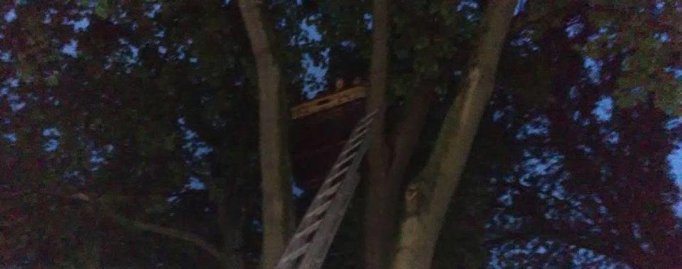В ГСЧС рассказали подробности крушения воздушного шара на Кировоградщине