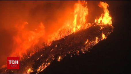 Масштабный пожар в Калифорнии стал самым крупным в истории штата