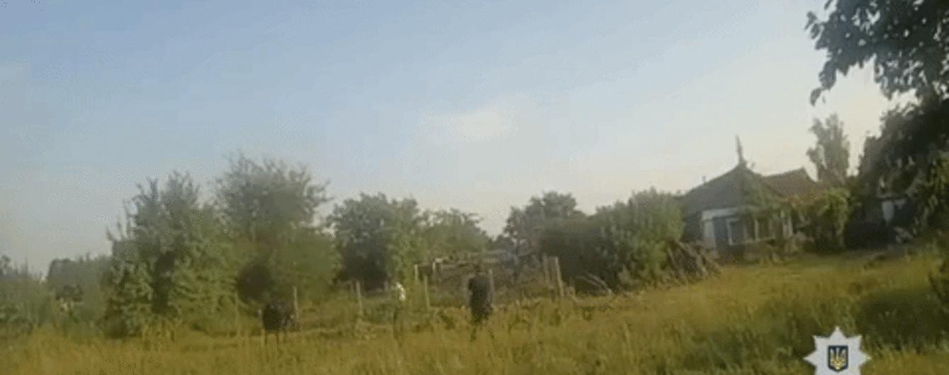 На Николаевщине полицейские вместе с охотником укротили бешеного быка