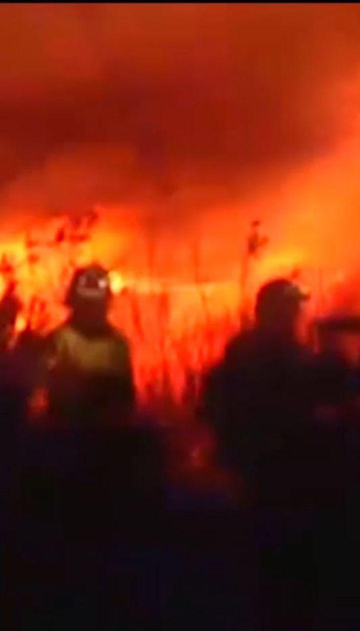 """""""Похоже на сценарий Армагеддона"""": эксперты рассказали о последствиях глобального потепления"""