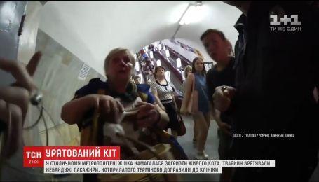 В столичной подземке женщина на глазах у людей пыталась загрызть котенка