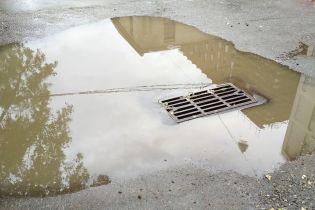 Комунальники показали, що виловлюють у каналізації Києва