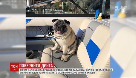 В Киеве средь бела дня похитили мопса