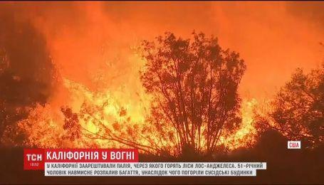 Масштабні пожежі у Каліфорнії: суд заарештував винного у підпалі