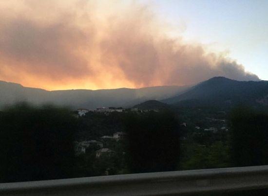 Під Ялтою загорівся ліс: місто затягло димом, а пожежники не можуть дістатись вогню