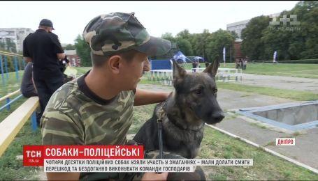 Соревнования собак-полицейских состоялись в Днепре